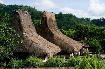 Tour Packages Flores Kelimutu Komodo Roland Tour Travel